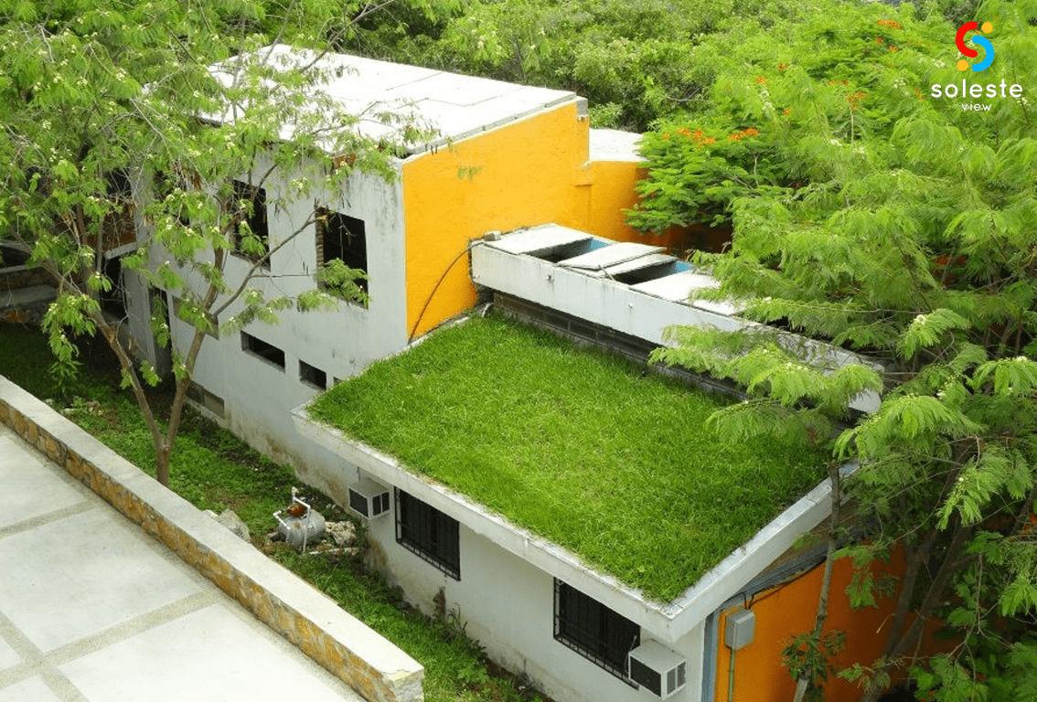 social y ambiental 2