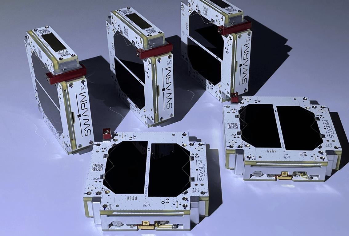 microsatélites 2